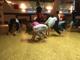 Dschungel Yoga 2018