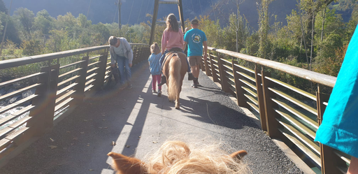 Mit dem Pony unterwegs